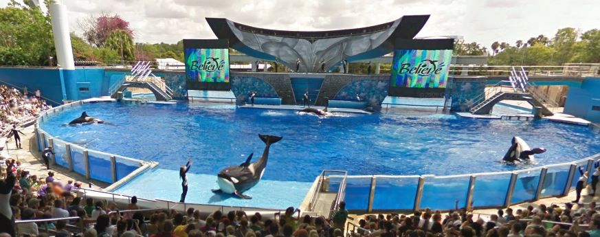 A SeaWorld employee died this afternoon during an incident at SeaWorld's Shamu Stadium