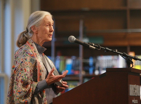 "Renowned British primatologist and conservationist Jane Goodall: ""It's our population growth that underlies just about every single one of the problems that we've inflicted on the planet"""