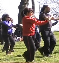 World Tai Chi and Qigong Day 2013 – Video Interview