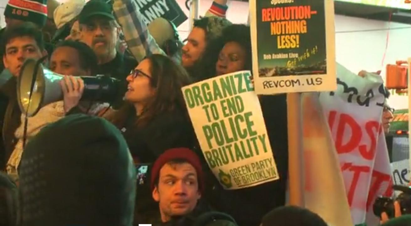 GreenPartyProtestor